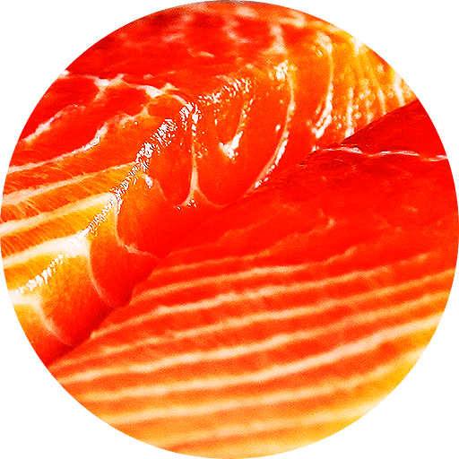 cropped-favicon-sushico-1.png